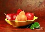California Beurre Bosc Pears in Fruit Bowl by Shelley Myke