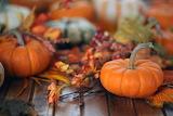 Aasml 23967595-1509963773-FO-175648529-thanksgiving-paris