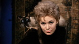 Kim Novak and Pyewacket in Bell, Book and Candle 02