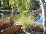 Gibb River Pool