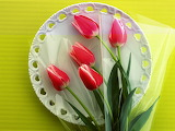 tulips on a plate