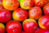 Mango-shutterstock 73021945-1024x683