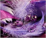Violet by cblue