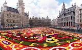 Flower-Carpet-Grand-Place-Antwerp-Belgium