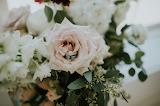 Rings In Rose