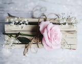 Rosa e legno
