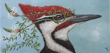 Pileated Woodpecker Mask By Vicki Sawyer