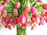 ^ Pink Tulips Bouquet