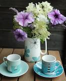 Morning Garden Forage