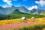 Cottages, meadows, mountains, Stock Photos, Robert Harding
