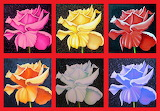 ☺ Collage- Paintings of roses...