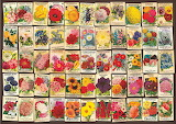 Seed packets collage