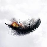 Nature Burning