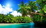 Fond-ecran-plage-exotique-beach-wallpaper