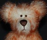 Bears - Norman