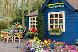 Rotate the Flower Bulb Shop