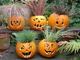 Plants-pumpkin-carving-halloween