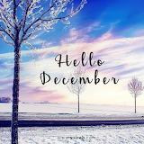 289401-Hello-December-Beautiful-Winter-Quote