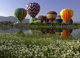 Air balloons-A guide to Colorado festivals and events for every