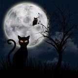 Night - fantasy