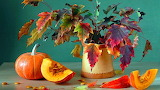 #Autumn Still Life