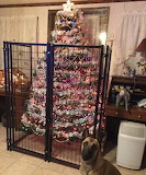Dog proof ornaments