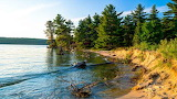 Michigan - Great Lakes Effect