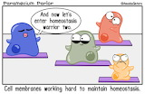 Science tumblr amoebasisters Homeostasis
