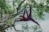 tree gymnastics