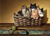 Basketful Of Cats