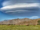 Clouds - Altocumulus lenticularis - Kern River Valley, Californi