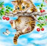 Kitten on the branch
