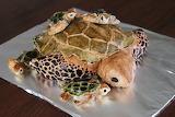 Sorry I thought you said turtles...