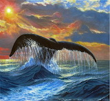 Whale's Tail Sunset by Phil Cusumano