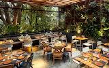 Desayunando rodeados de plantas