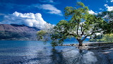Lake Wakatipu Queenstown New-Zealand