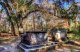 Graves at Old Sheldon Church