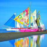 Colorful Sails...