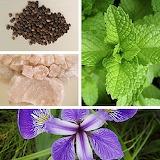 Toothpaste= Pepper, Rock Salt, Dried Mint & Iris Flower Powder
