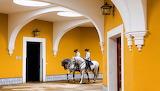 Jerez,  Real Escuela Andaluza del Arte Ecuestre