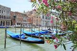 Italy-Venice-grand canal-gondolas