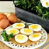 Ous - Eggs