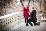 Girl, woman, male, guy, man, bridge, wedding proposition, couple