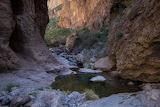 Arizona TontoNationalForest 5