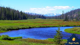 Yellowstone National Park by Chuck Beck from auricle99 on magic