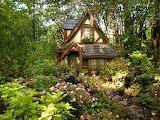 nestled in the woods