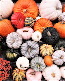 #Autumn Gourds