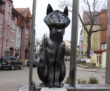Zelenograd, Cat