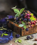 Berries in a Box