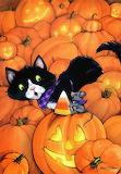 Janet Stever 'Pumpkin Buddies'